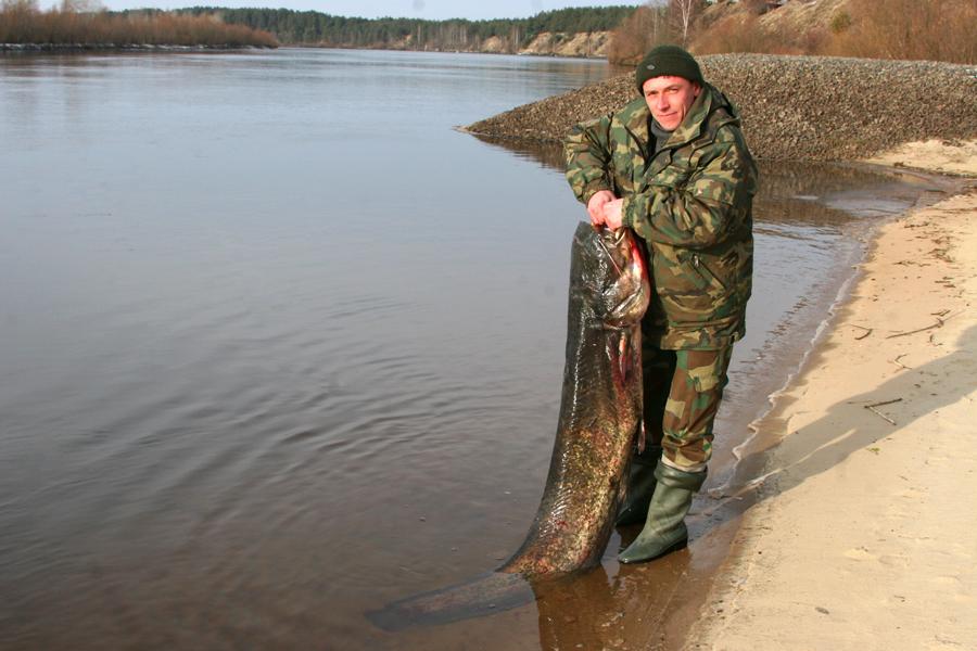 рыбалка в белоозерске беларусь